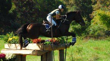 Dana W., Horseback Rider